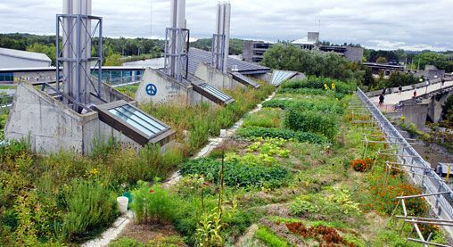 Green Roof Projects Zinco Rooftop Garden Green Roof Project Green Roof
