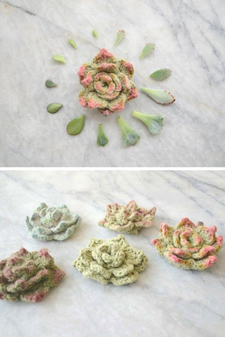 Succulents Rosette Succulents - FREE crochet pattern & tutorial. Use items that you already have at home to make your crochet succulents look even more realistic!  crochet patternRosette Succulents - FREE crochet pattern & tutorial. Use items that you already have at home to make your crochet succulents look even more realistic!  crochet pattern