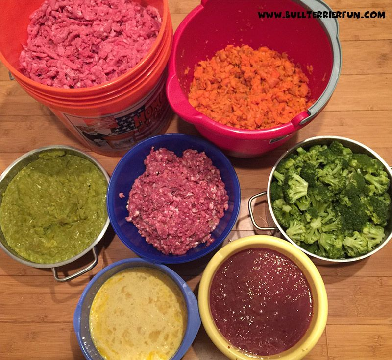 Low Starch Grain Free Homemade Raw Food Recipe For Dogs Pups