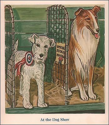 DOG-SHOW-Collie-Wire-Haired-Fox-Terrier-vintage-print-authentic-1941