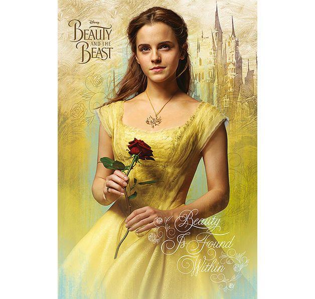 Beauty And The Beast Poster Die Schone Und Das Biest Prinzessinnen Frau