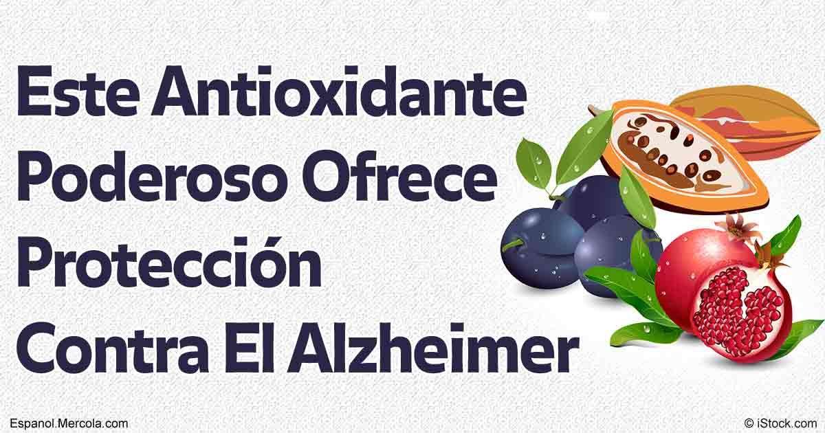 El resveratrol es una polifenol recientemente identificado como un compuesto prometedor en relación para la combatir la enfermedad de Alzheimer. http://articulos.mercola.com/sitios/articulos/archivo/2016/08/15/resveratrol-para-el-alzheimer.aspx
