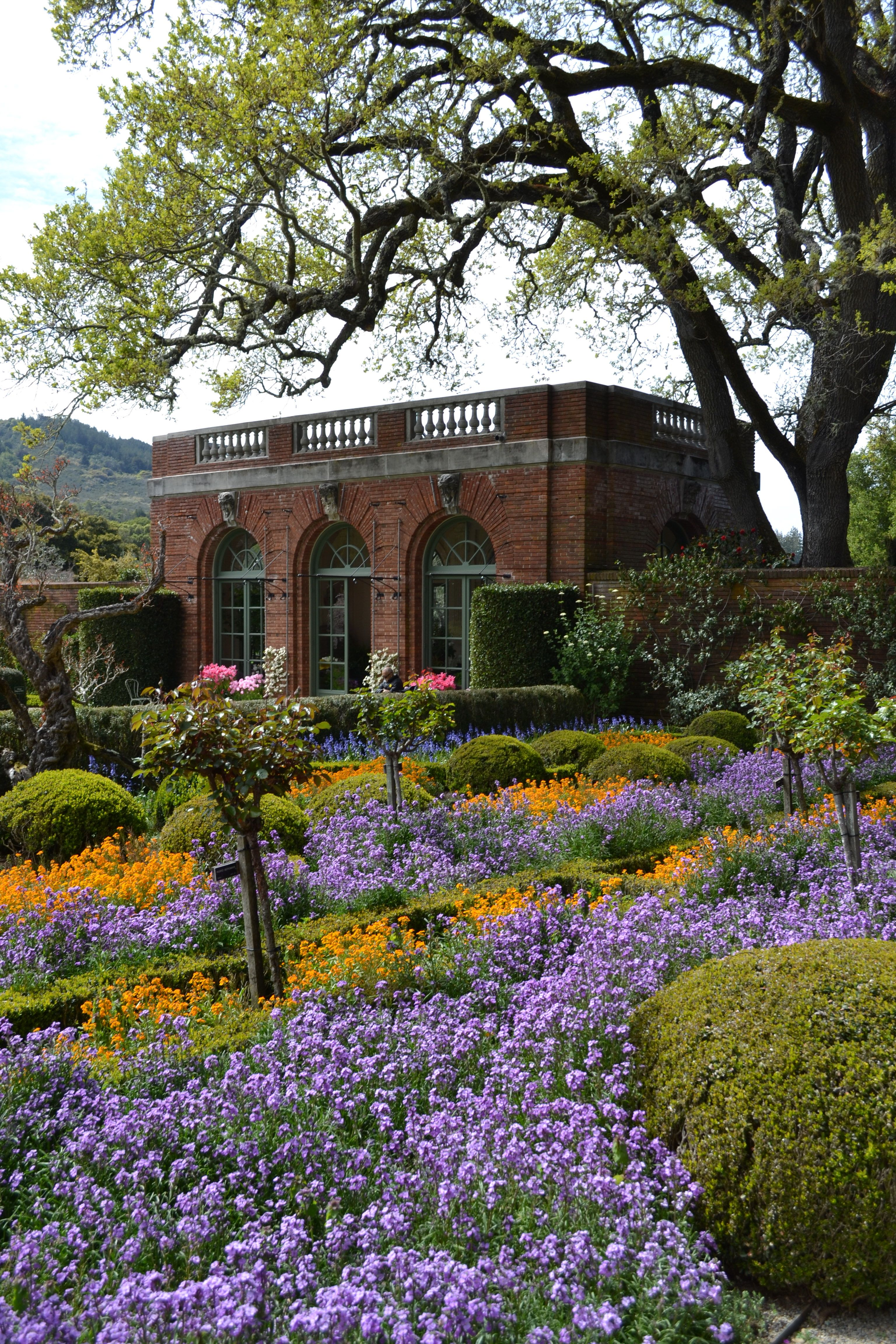 Filoli mansion near my house  designed after Muckross house in Killarney Ireland  Filoli