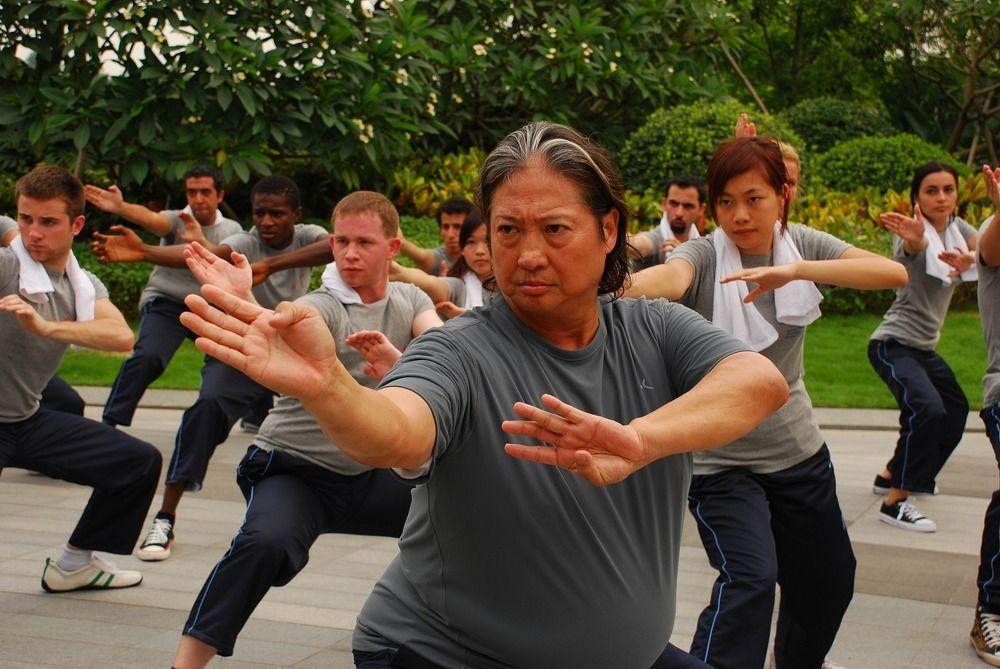 Sammo Hung in Choy Lee Fut