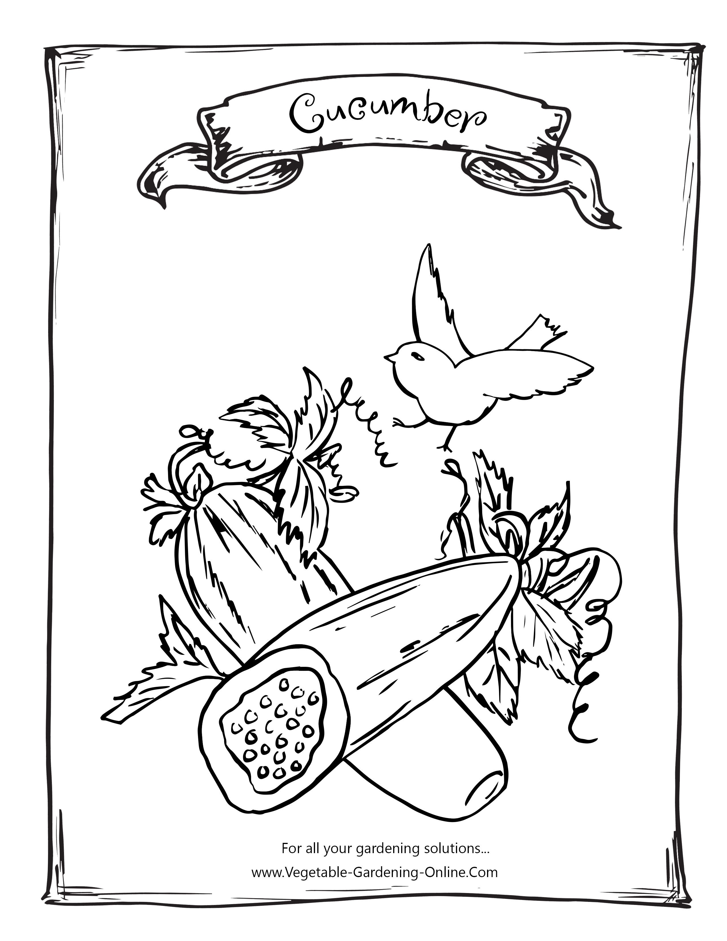 Printable Garden Vegetable Coloring Page For Kids