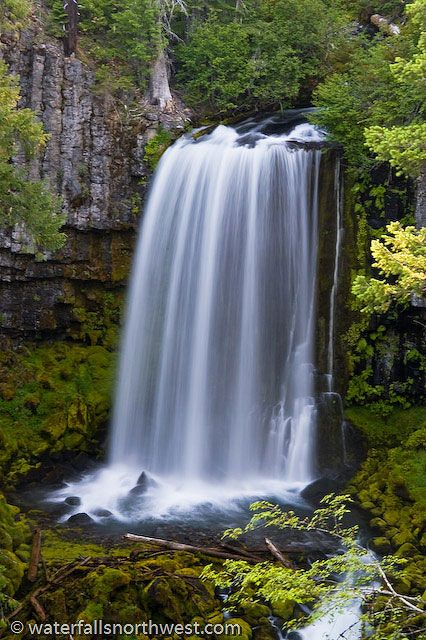 Warm Spring Falls, (near Idleyld Park, Hwy 138, OR), 0.6-mi hike out & back. A 60' waterfall where its namesake creek thunders over a columnar basalt formation into a mossy amphitheater
