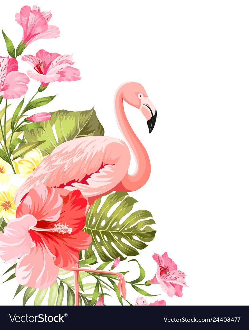 Flamingo Background Design Tropical Flowers Vector Image On Vectorstock Tropical Flowers Illustration Flamingo Illustration Tropical Illustration