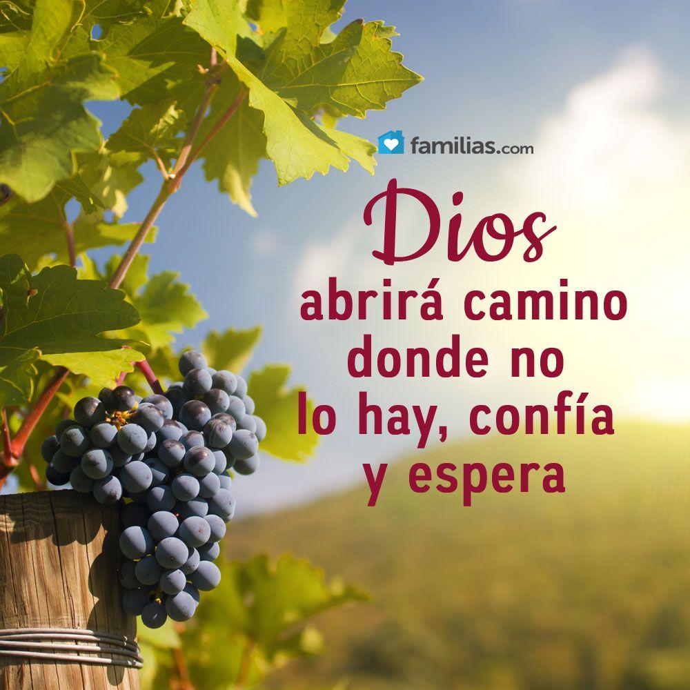 Dios Abrirá Camino Mensaje De Dios Bendiciones Cristianas Dios