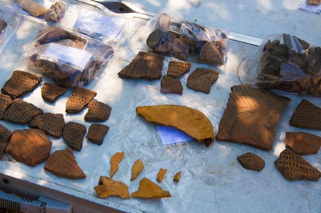 Fragmentos cerámicos: La dieta de la población de la parte continental de Primorie (Rusia) en el Neolítico (Edad de Piedra tardía) consistió principalmente en peces de agua dulce, plantas del bosque y los animales, mientras que en las culturas costeras predominaban los organismos marinos.