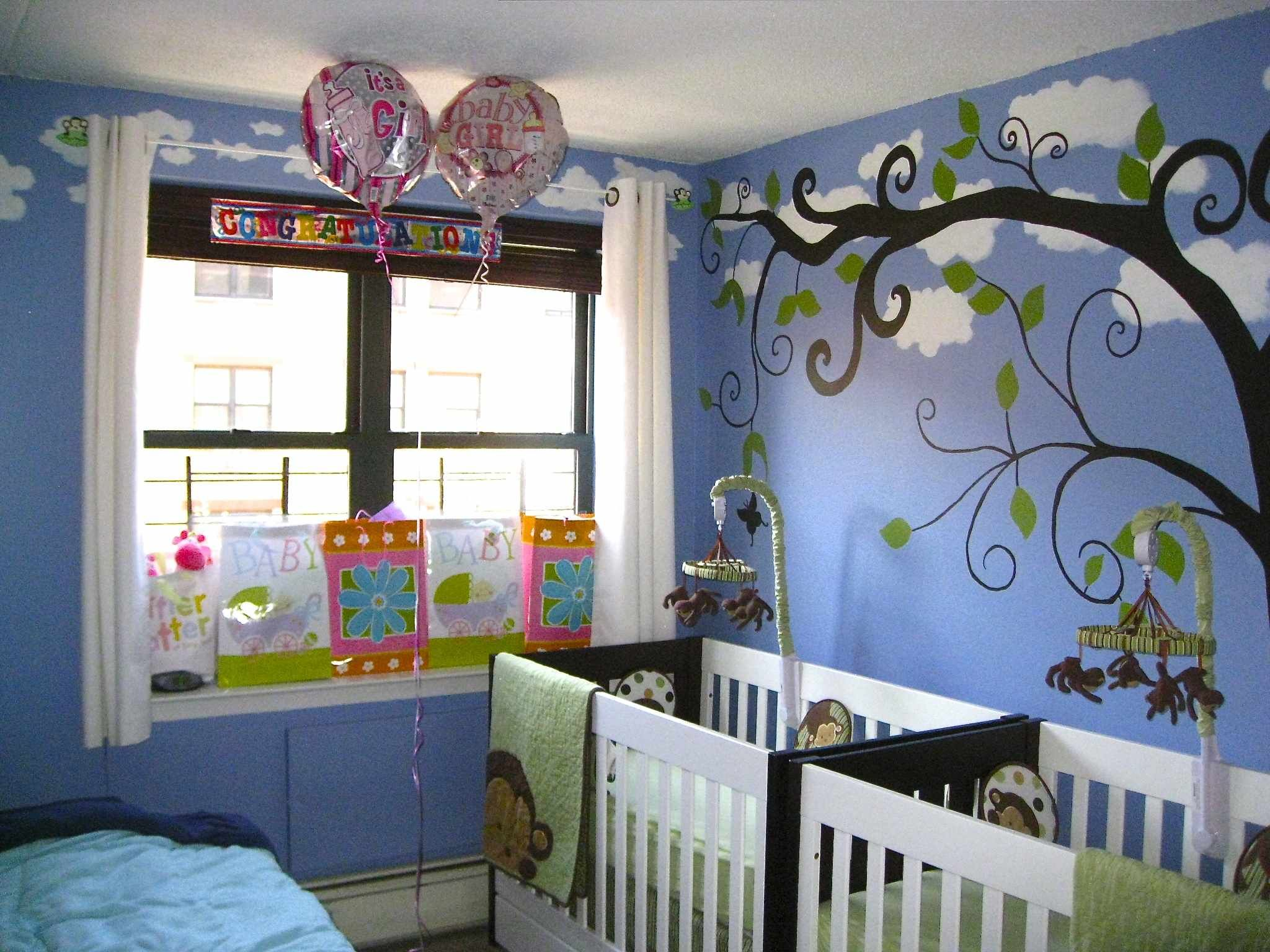Baby Room Ideas For Twins Stunning Decorating Design