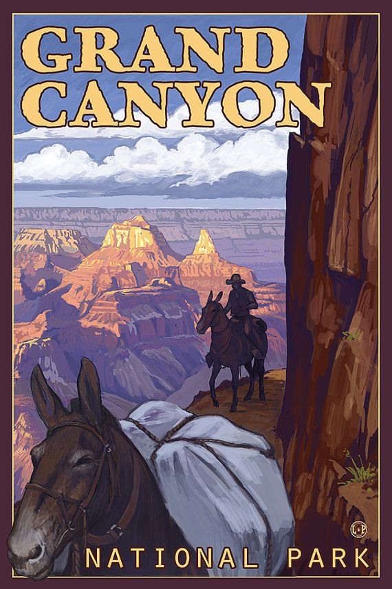 Mule Train  Grand Canyon National Park Art by NightingaleArtwork