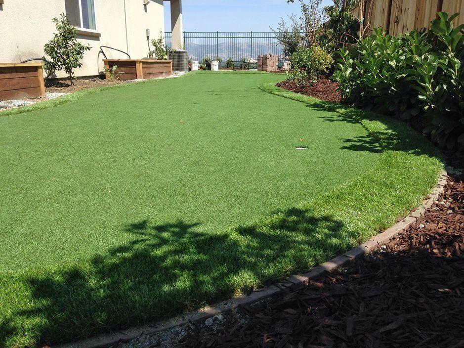 Artificial turf port huron michigan lawns backyard