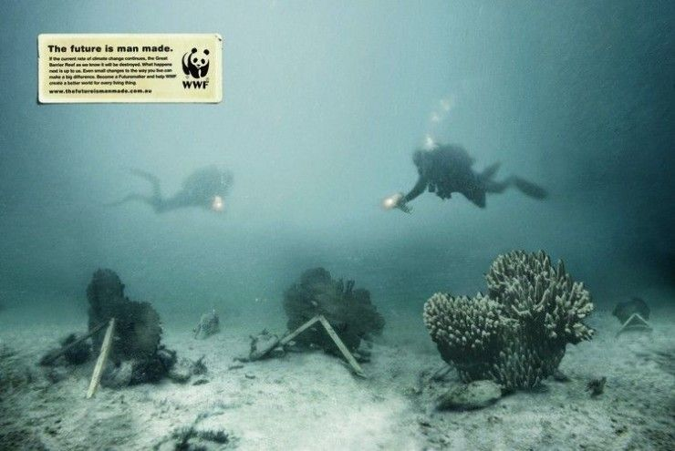 """world wildlife fund ad""的图片搜索结果"