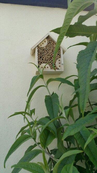My bug hotel