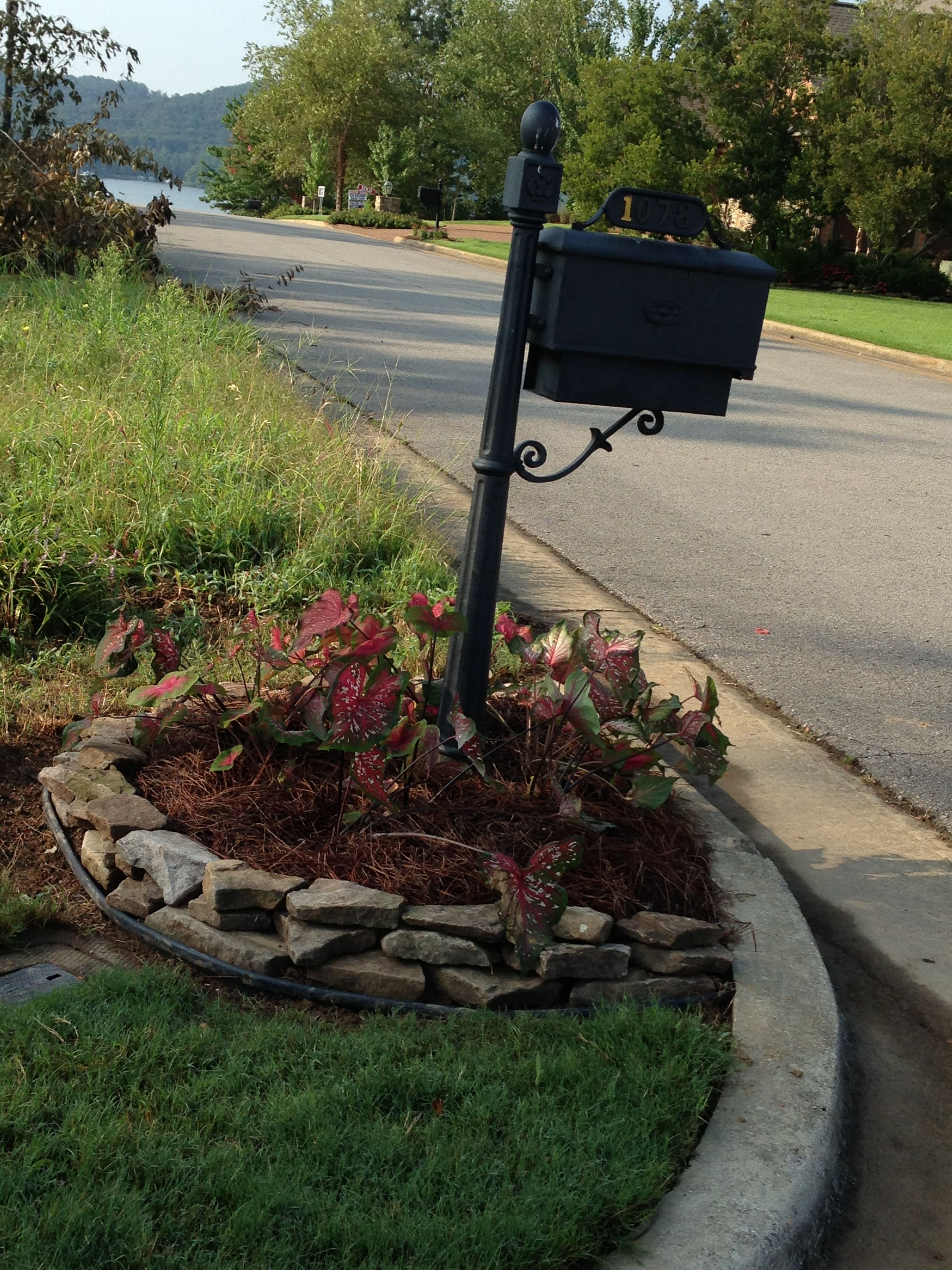 Mailbox flower bed Mailbox landscaping, Mailbox flowers