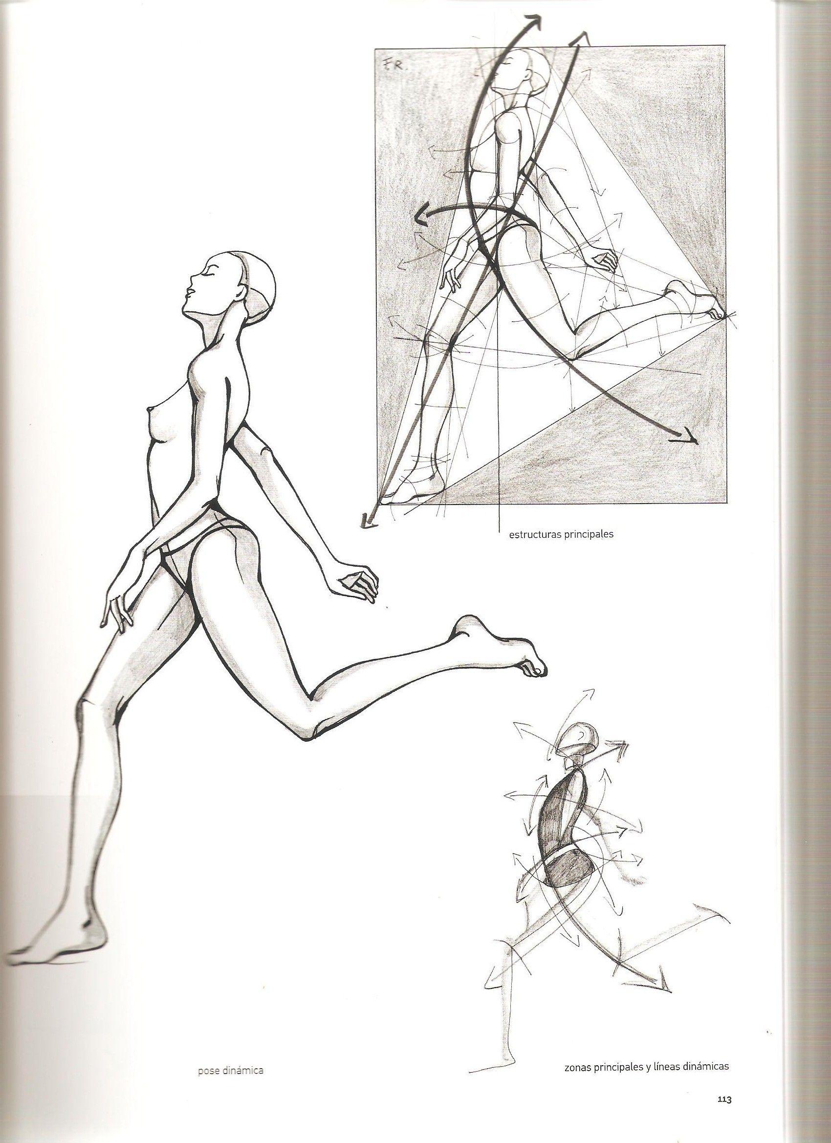 Ilustración de la moda básica. | Pinterest | Dibujo, Anatomía y ...