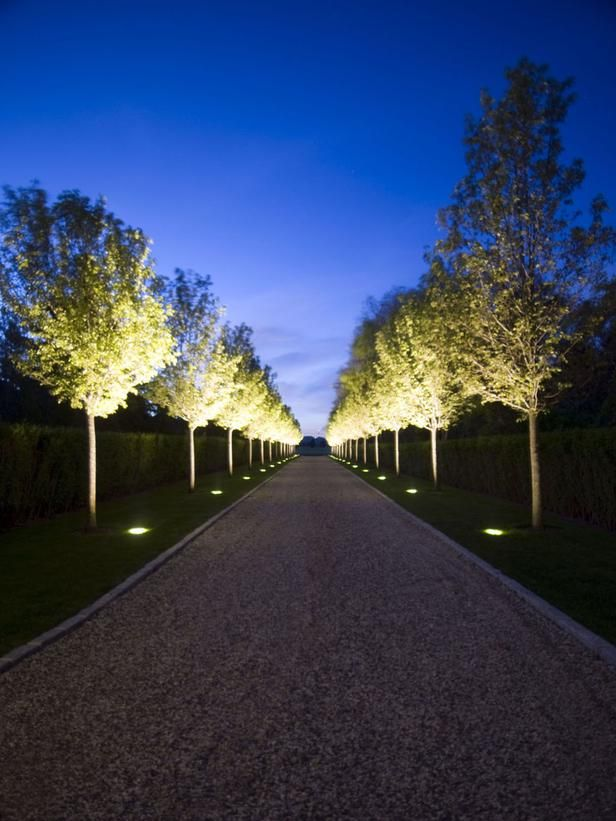 Simple Floodlights Shining Upward On Tree Canopy Makes A Brilliant Statement At Night Outdoor Pathways Driveway Landscaping Landscape Lighting Design