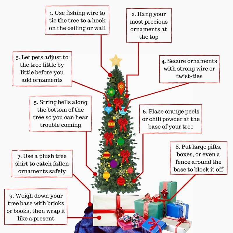 Keep Cat Away From Christmas Tree: How To Keep Your Kids, Pets, And Christmas Tree Safe This