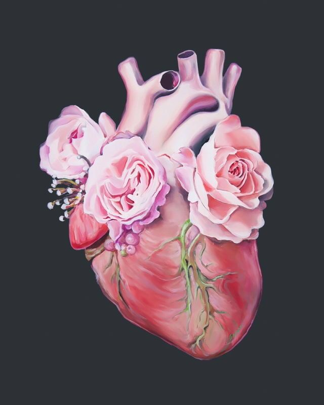 Rose heart | Medical art, Anatomy art, Heart art