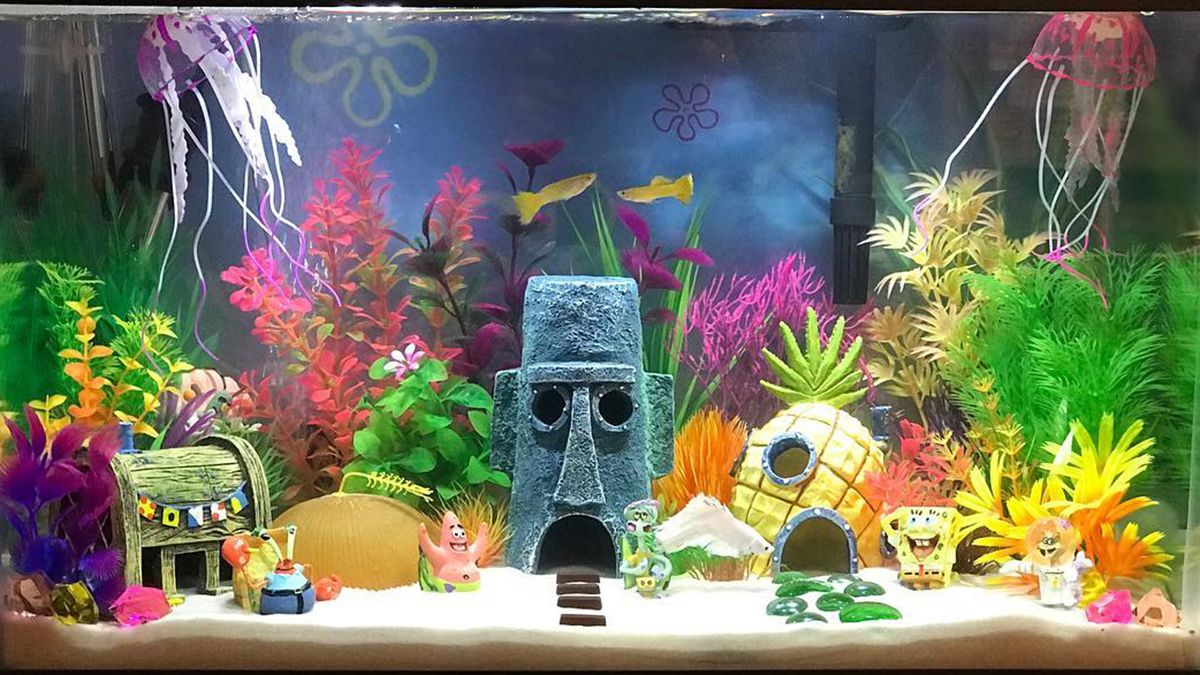 5 Cool Fish Tank Themes That Will Inspire You Cool Fish Tank Decorations Cool Fish Tanks Fish Tank Themes
