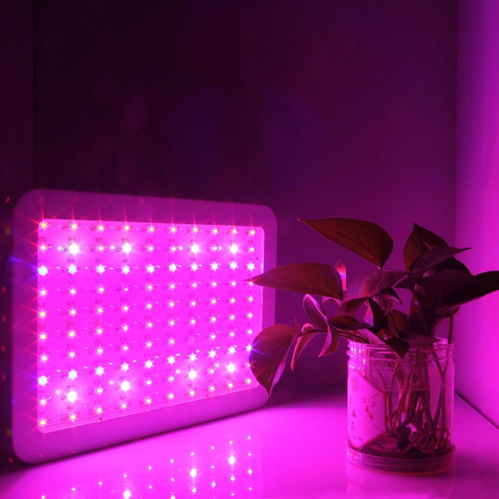 1000w Led Grow Light Full Spectrum Panel Veg Flower Indoor Garden Medical Plants Grow Lights Led Grow
