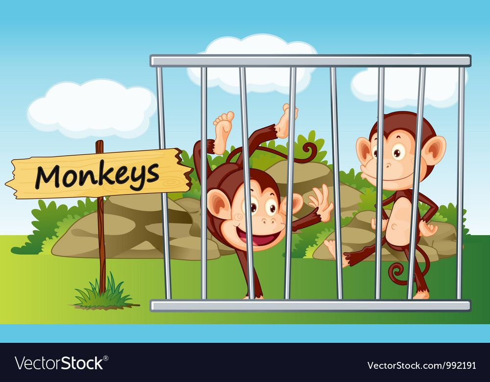 20+ Animals In Cages Clipart