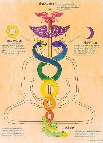 Secrets of Kundalini Series: Magic of the Meridians in