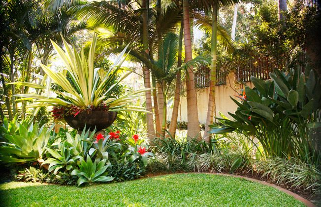 Tropical Garden Ideas Brisbane simple tropical garden ideas brisbane steven clegg design