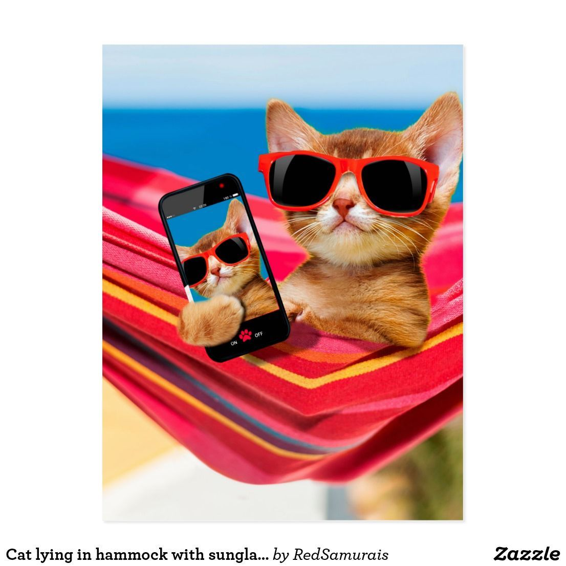 Cat Lying In Hammock With Sunglass Postcard Zazzle Com Cat Summer Kitten Photos Cat Sitting