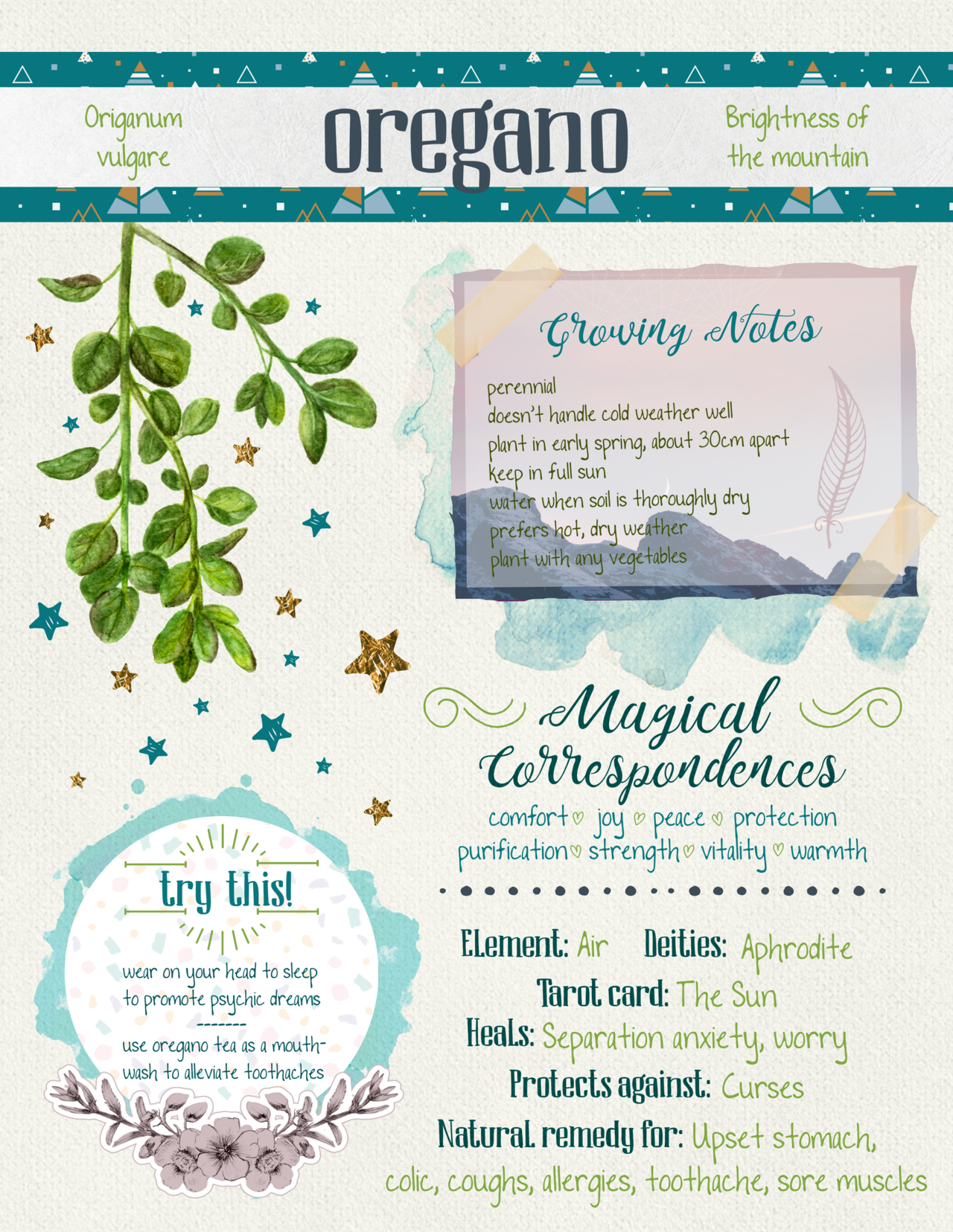 Magical Correspondences Of - Oregano #greenwitchcraft