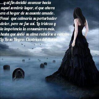 La rosa negra cicatrices del destino disponible en amazon visita la rosa negra cicatrices del destino disponible en amazon visita facebook fandeluxe Choice Image