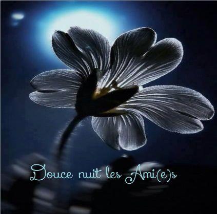 Très Douce nuit les Ami(e)s | bonne nuit | Pinterest | Douce nuit, Les  OR01