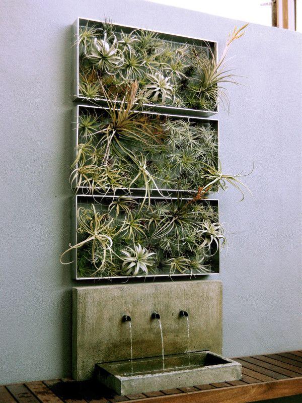 vertikale mini g rten alu rahmen tillandsien zierpflanzen. Black Bedroom Furniture Sets. Home Design Ideas
