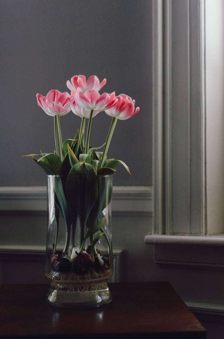 100 Fantastique Suggestions Tulipes En Pot À L Intérieur