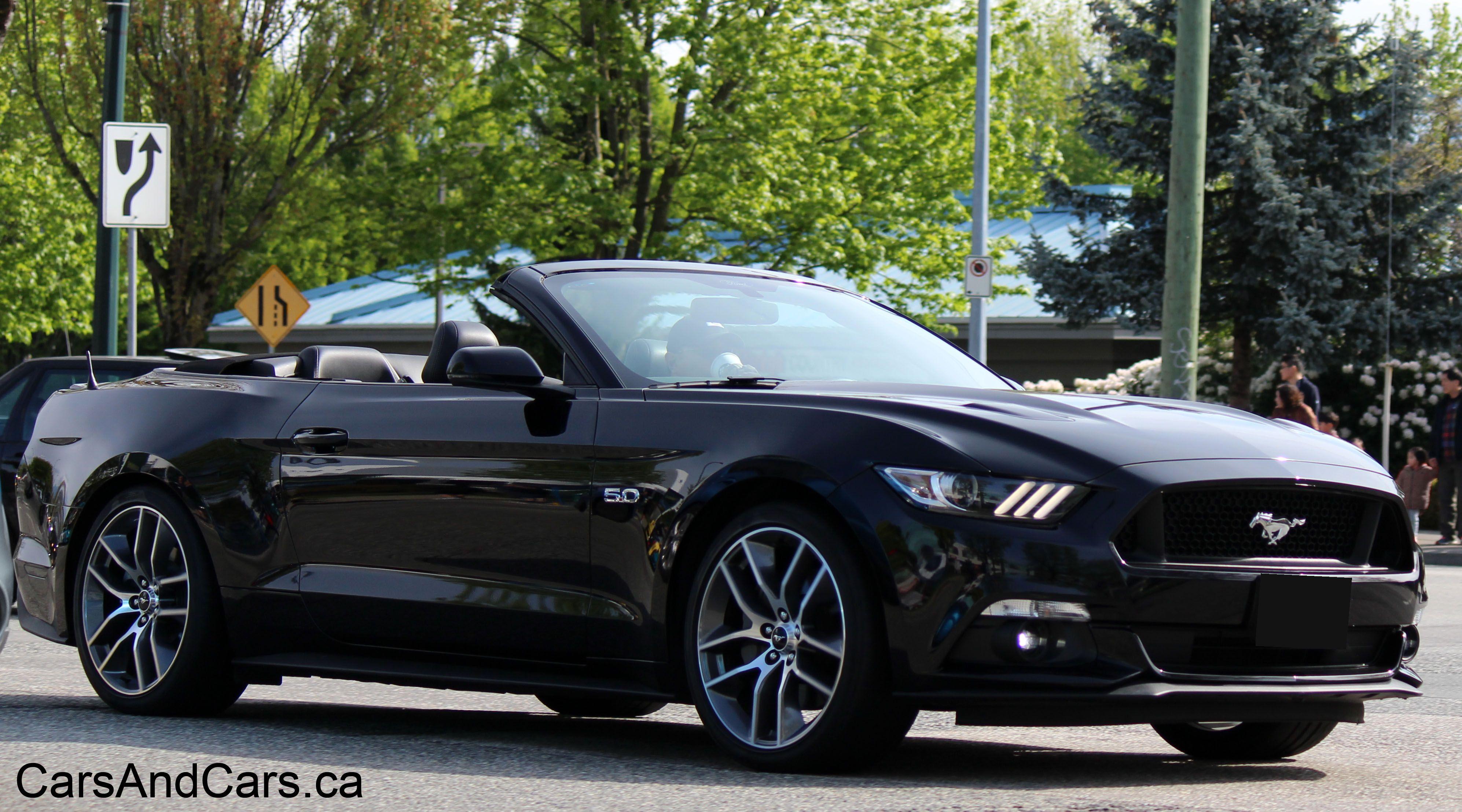 Ford Mustang Ford Mustang Mustang Ford Mustang For Sale
