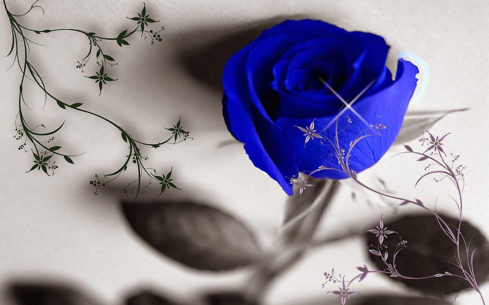 Blue Roses Pichttp My143rose Blogspot Com Blue Rose Wallpaper Blue Roses Rose Wallpaper