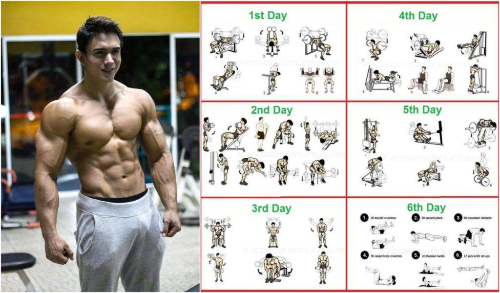 8 Weeks Workout Program For Beginners Beginner Workout Program Workout Programs Workout For Beginners