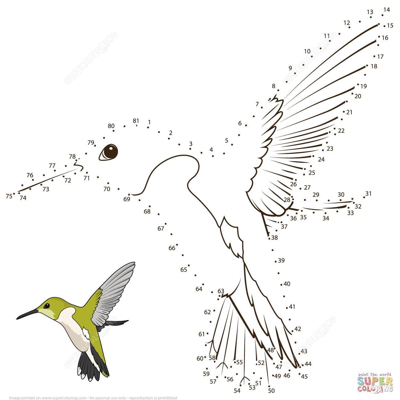 Hummingbird Dot To Dot