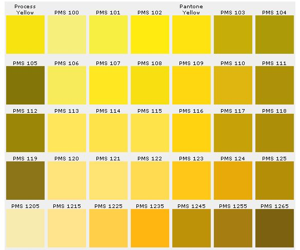 Pantone Color Chart Ensures Accuracy | Custompins Inc. | Colour
