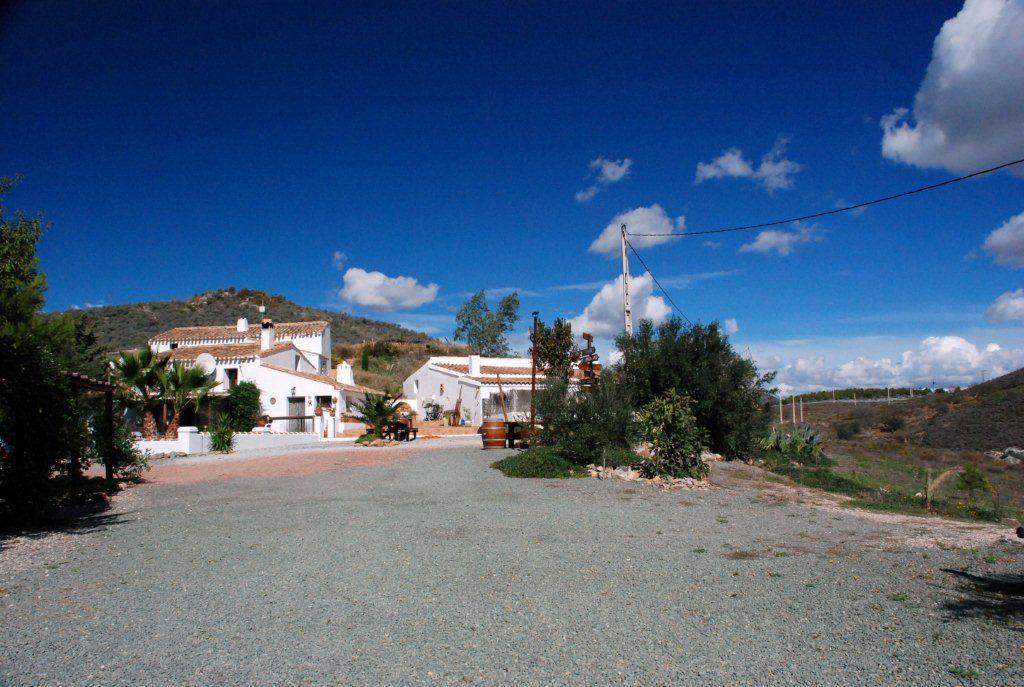 el zorro in Lumbreras, Murcia