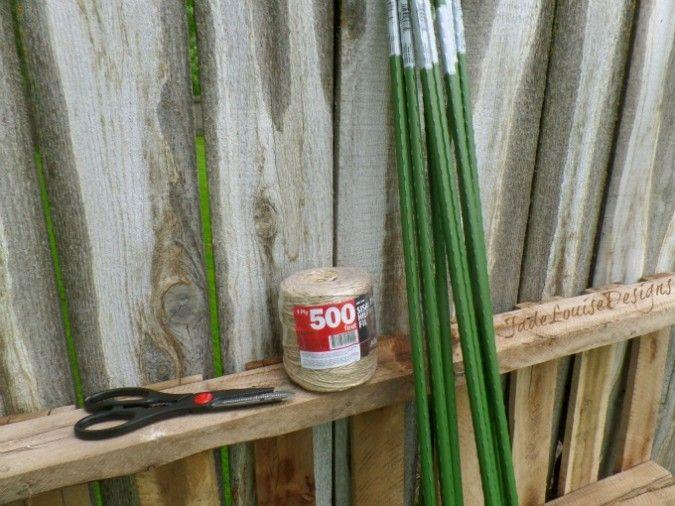 Diy Raspberry Trellis Support System For Gardening