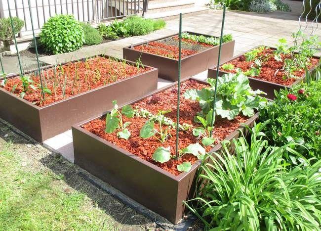 permaculture en bac sur une terrasse potager en carr design pinterest permaculture bac. Black Bedroom Furniture Sets. Home Design Ideas
