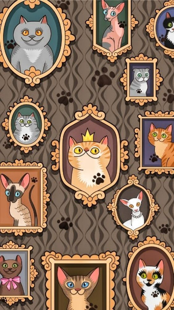 Photo of Gatos – fondos de pantalla – gatos – fondos de pantalla – #albinoanimal #amazinganimals #ani …