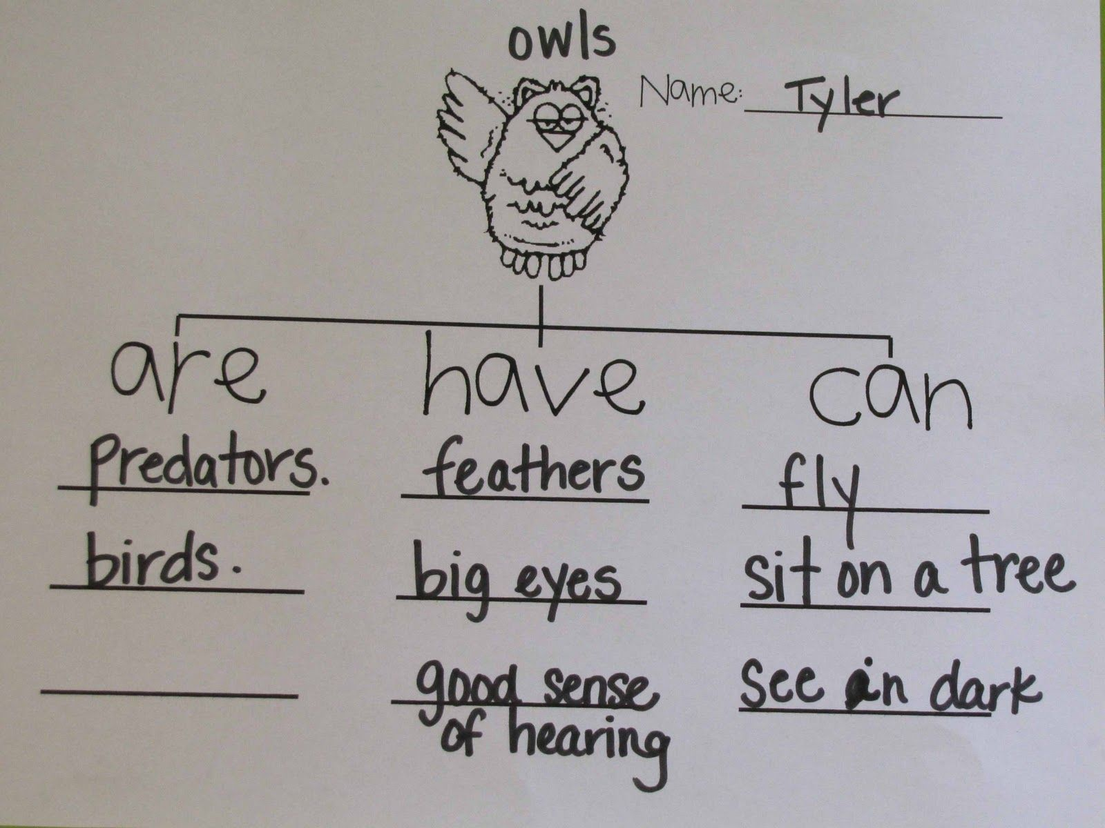 Free Owl Moon Worksheets