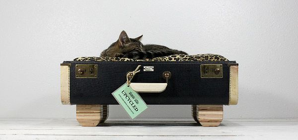 Nice use of an old suitcase.