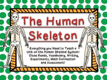 This is a complete unit- everything you need to teach the human skeletal system!  Contains 3 close read activities, 2 vocabulary foldables, 2 writing activities, math activity, science experiment, a fun game and of course a unit test!  Lasts 1 1/2 to 2 weeks and kids will be engaged the entire time!