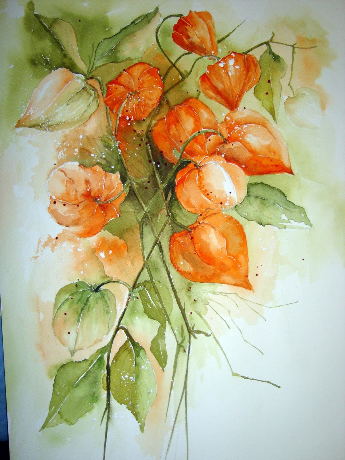 Chinese Lanterns Floral Watercolor Watercolor Flowers