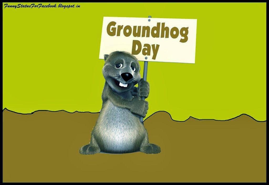 Groundhog Day Wishes Wallpaper Groundhog Day Happy Groundhog Day Day Wishes