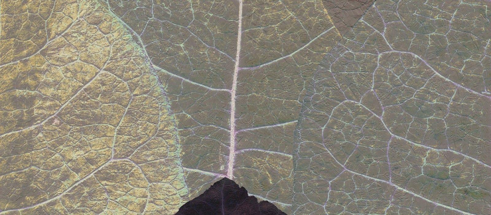 Pehmeät ääriviivat - lämpimät värit Countryside-malliston tapetit kuvastavat luonnon kauneutta. Suunnittelu ja värimaailma luovat täydellisen harmonian yhdistelemällä luonnollista ja nykyaikaista tyylikkyyttä. Malliston murretut värit antavat kuoseille haaveenomaisen ja rauhoittavan tunnelman ja aidonoloiset puun syyt luovat elävän vaikutelman seinälle. Valokuvatapetti 6-osaa Tapetin koko 318 x 280 cm