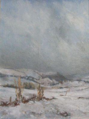 Winter, Cwmerfyn by Avril Rees north wilderness sweater